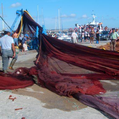 Fishermen at the fishing port of Peniche.