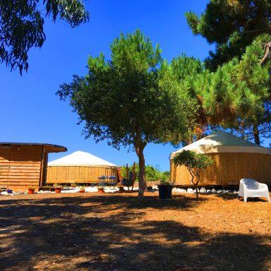 Utlity hut and two yurts.