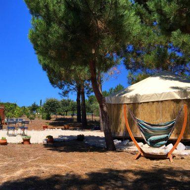 The hammock seat in front of the blue door yurt.