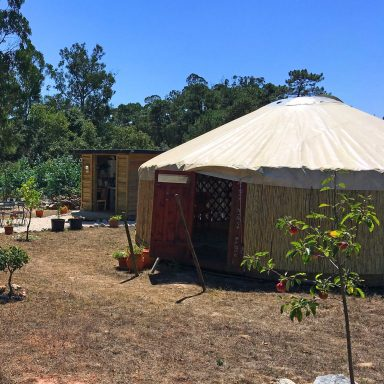 The larger red door yurt with the utlity hut behind it.